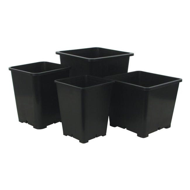 Premium Square Black Plastic Pots -- 8 inch x 8 inch x 7.5 inch These pots are durable and versatile. They are injection molded containers manufactured with high-grade polypropylene. They feature a tag locator slot for the uniform display of stick tags.