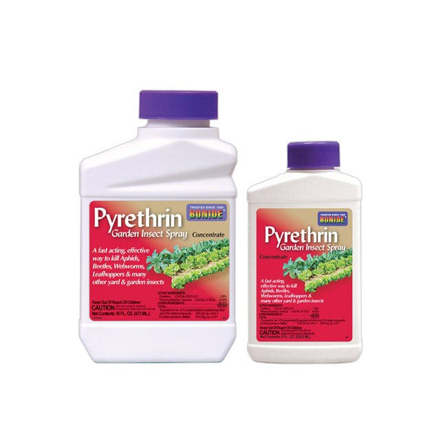 Bonide Pyrethrin Garden Insect Spray - Concentrate -- 8 oz Natural Pyrethrin in a concentrated formula for economical, natural, broad spectrum garden insect control. Not for Sale in AK, CA, DC, ME, NY, SD, and WY at this time. <l