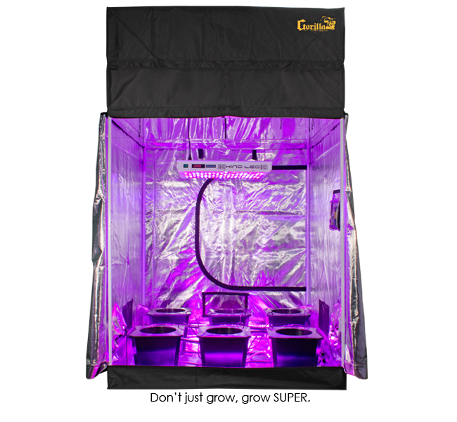 """SuperCloset LED SuperRoom 5x5 SuperCloset introduces the ace of grow rooms, LED SuperRooms featuring this year's award winning """"Best LED Grow Light,"""" Kind LED K5 series XL1000 and XL750. The K5 XL1000 is comparable to a 1000w HID but consumes nearly half the electricity and produces virtually no heat. The spectrum of the K5 series is adjustable with dimming capabilities for both vegetative and flowering stages of growth. LED SuperRooms feature the S.T.A.S.H. award winner for """"Best Grow System,"""" SuperCloset's Super Bubble Flow Buckets. This particular system combines recirculating upwelling and deep-water culture into one fully automated yield machine. LED SuperRooms additionally feature S.T.A.S.H. award winner for, """"Best Grow Tent,"""" Gorilla Grow Tent. Super Bubble Flow Buckets, Kind LED, and Gorilla Grow Tent have created a hydro heaven's award winning trio. SuperCloset SuperRooms are advertised in the following sizes: 2'x4', 5'x5', 5'x9', and 9'x9'. The GrowersHouse Sales Team will turn any size of Gorilla Grow Tent into a SuperRoom, all the way up to their 10'x20'! Give us a call at GrowersHouse (855) 289.1441 to ask us about our Custom Grow Tent Packages & Ship Quotes! SuperCloset LED SuperRoom 5' x 5' Product Description SuperCloset's All-In-One, Turn-Key, Complete LED Grow Kit Makes Indoor Gardening Simple and Fun Take the guesswork out of growing and grow like a professional in your Complete LED Grow Kit SUPER ROOM Complete LED Grow Kit The Super Closet Super Complete LED Grow Kit is a professionally designed, fully automated complete led grow kit that comes with everything you need for a smooth and easy growing experience The 5′ x 5′ SuperRoom Complete LED Grow Kit comes standard with Gorilla Grow Tent 5' x 5' w/ 1ft extension Gorilla Grow Tent – The very best and tallest, thickest, and strongest grow tent available. This is the only height adjusting grow tent available worldwide! (1) Kind LED K5 XL750 Upgrade to (1) Kind LED K5 XL1000's! (1)"""