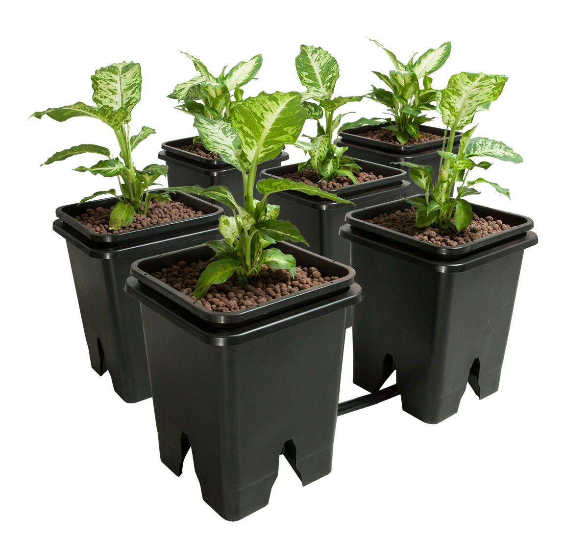 Active Aqua Grow Flow 5-Gal Expansion Kit 3/4  6 pot, 5 Gal This expansion kit supports our Grow Flow Ebb and Gro Controller unit. Maximize the performance of that system by adding six more buckets through this pack. These buckets work with all ebb and flow controllers, so you can augment whatever setup you've already got in place or are thinking of adding to your grow room. With multiple kits, your growing knows little bounds! Expand your ebb & flow system up to 48 plant sites on one control unit - depending on reservoir size - control unit and reservoir sold separately. Includes 6 - Outer buckets 6 - Inner buckets 6 - 3/4  barbed tee connectors 3 - 3/4  barbed elbow 6 - Screen fittings 12 - Rubber washers 1 - 25' roll of 3/4  tubing Features Centered drain fitting minimizes standing water Unique aeration channels for improved root health Each bucket holds approximately 13L of clay pebbles or similar medium *A control unit and reservoir (sold separately) are required to use this expansion pack