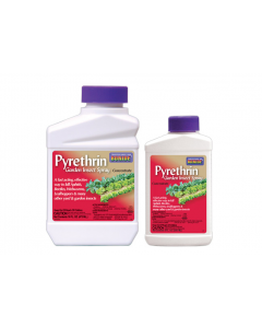 Bonide Pyrethrin Garden Insect Spray - Concentrate