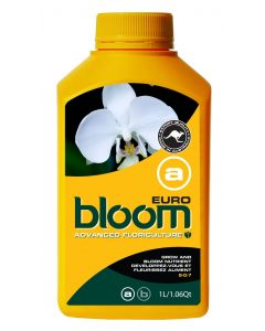 Bloom Yellow Bottle - Euro A