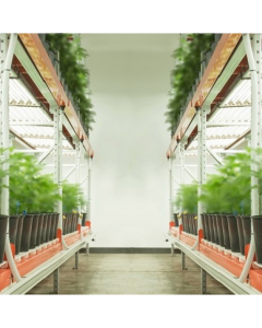 Pipp/Greenhaus Multilayer Grow Tables