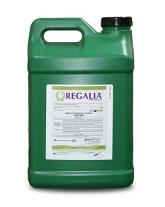 Regalia BioFungicide OMRI Listed - 2.5 Gal