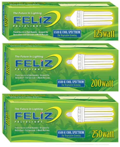 Feliz Fluorescent Grow Lamp - 125W Blue 6500K