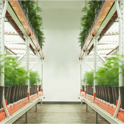 Greenhaus Multilayer Grow Tables Greenhaus Multilayer Grow Tables maximize the grow potential of your space with vertical expansion. Stack your blooms and see the efficiency and productivity of your operation climb.   Greenhaus Multilayer Grow Tables are designed to accommodate each grower's unique needs. Powder-coated aluminum tables come in standard sizes of 3x4, 4x4, 3x8, 4x8 and custom sizes are always available. Greenhaus Multilayer Grow Tables come in Drip-to-Waste, Ebb & Flow, and Living Organic Soil Bed styles to integrate with your specific operation and grow style. Table heights adjust easily to provide adequate veg and flowering space as your plants mature. Greenhaus Grow Table systems include the option of rolling or floating setups using castors and/or tracks, allowing you to maximize both your vertical and horizontal space by eliminating fixed aisles while retaining full access to your plants.  Greenhaus Veg Grow Tables are built to reduce your veg footprint to open up space for flowering. Greenhaus Bloom Tables are designed to maximize flowering space. Greenhaus Bloom Tables are built to handle projects of any size, including large-scale commercial agriculture enterprises. Complementing the tables is the easy-to-clean, easily removable Anti-Microbial & Fungal Drainage Insert, which lies on top of the Grow Tables to assure proper drainage and aeration underneath. Greenhaus Industries has implemented double, triple, and even quadruple vertical expansions for growers in Arizona, California, Colorado, and Nevada. Greenhaus Multilayer Grow Table systems comply with U.S. building and seismic codes, allowing you to safely and efficiently expand your operation using the space you already have. Greenhaus Multilayer Grow Tables give you the flexibility to increase your operation's production and profitability to reach its maximum potential with ease. Contact us today for more information on Greenhaus Multilayer Grow Table systems, including custom options