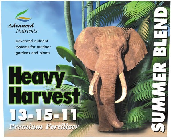 Advanced Nutrients - Hammer Head - 10L