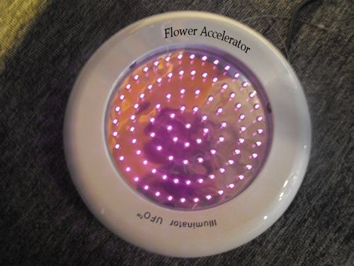 ProSource Flower Accelerator *DISCONTINUED* We are now offering a special supplemental light called the Flower Accelerator that does just what the name implies. We are creating a pure spectrum of light that acts as a synergy effect to compound the effects of flowering at a 10X equivalency. This specially designed light duplicates the effects from the Autumn Effect that allows that far red spectrum through the atmosphere and really enhance your flowering production as well as the overall strength and flavor aspects. Through our initial testing of this supplemental light we have seen yield increase by better than 20%. Again we are the first company to bring a product like this to market so beware of the imitators. You may use this light only during the Flowering Cycle and should be used with the same lighting time cycle as your main overhead light.