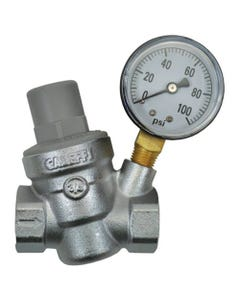 "Dilution Solutions Pressure Regulator with Gauge – ¾"" (FPT x FPT)"