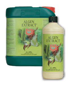 House & Garden - Algen Extract