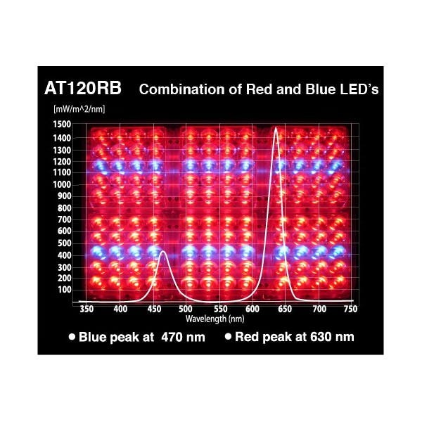 Apache Tech - Red and Blue LEDs - AT120RB