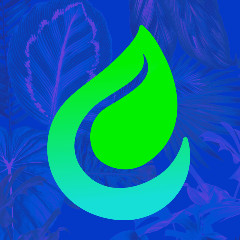 Photograph of Veg+Bloom DIRTY Nutrient Starter Kit