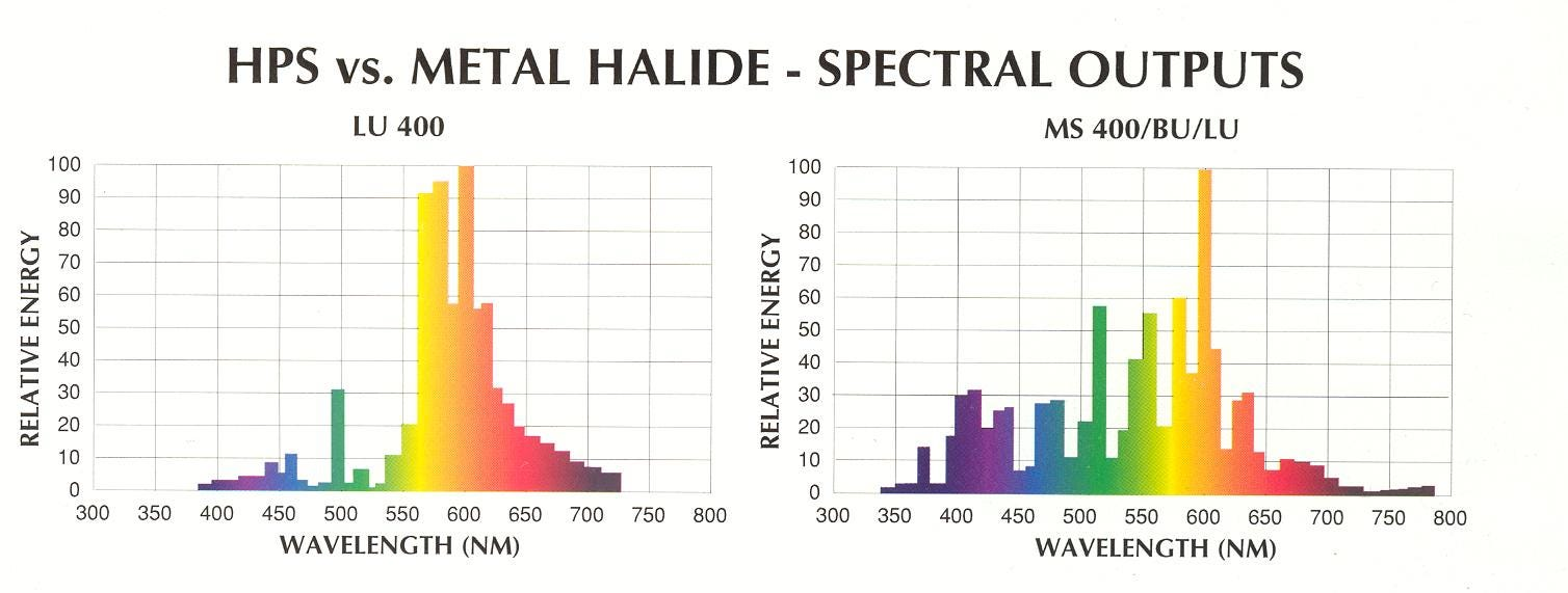HPS vs MH Grow Lamp Spectral Differences