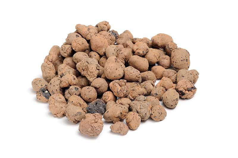 hydroton, expanded clay pebbles