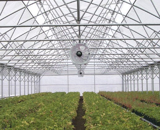 Vostermans Multifan HAF Q Fans in Greenhouse